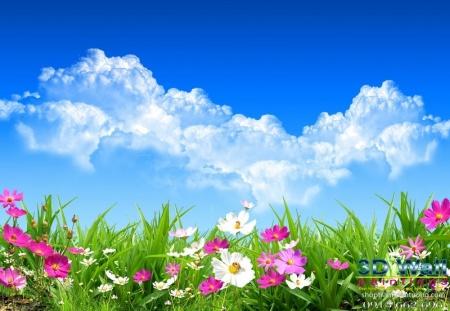 Tranh dán tường hoa lá DHL2068
